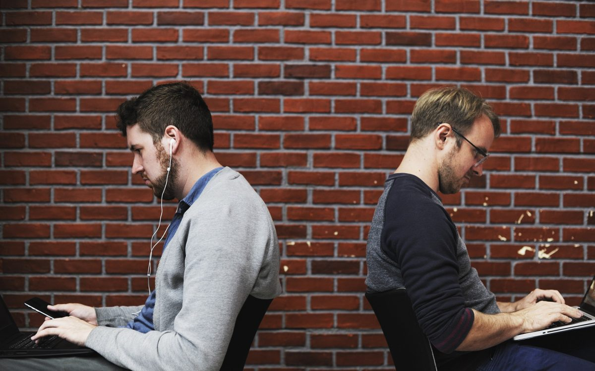 Information Technology vs Web Development